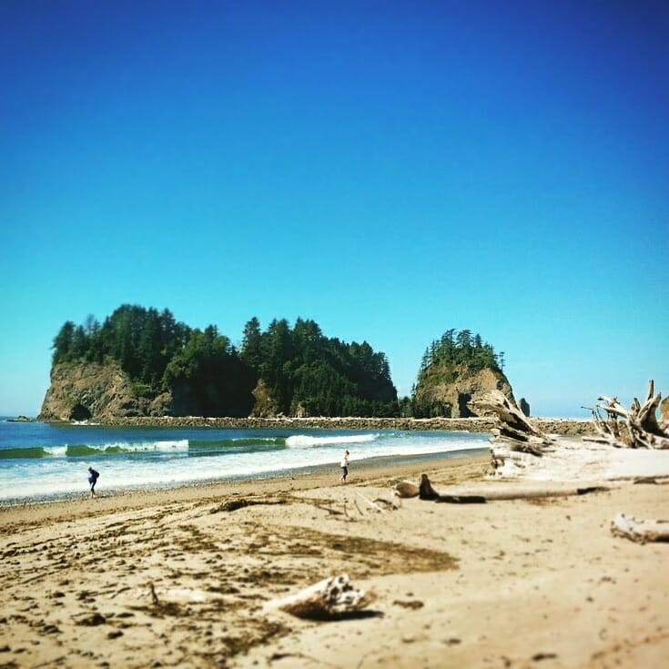 Salt Creek Beach Olympic Peninsula