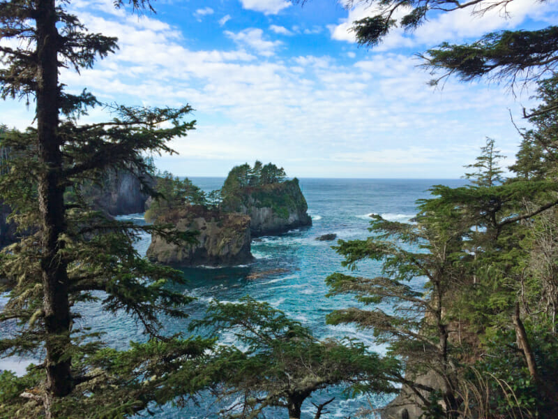 Lands End Cape Flattery Olympic Peninsula 3b