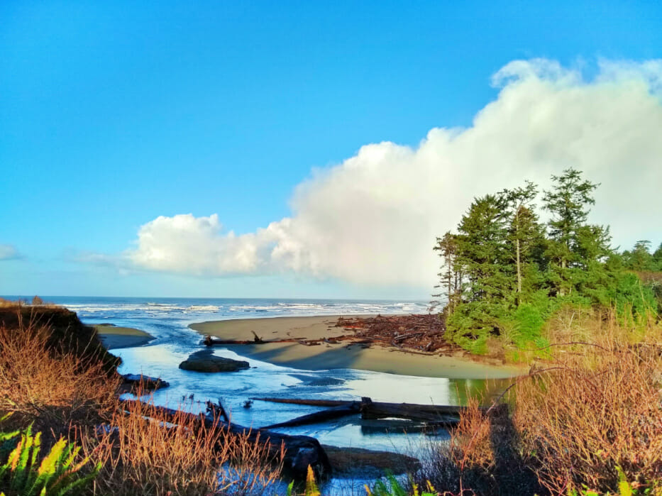 Olympic National Park - Kalaloch Creek from Lodge - Ordinary Adventures 1